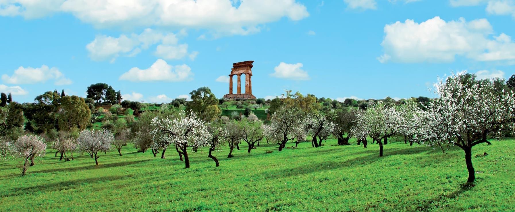 Latte di Mandorla il Nettare della Terra Siciliana